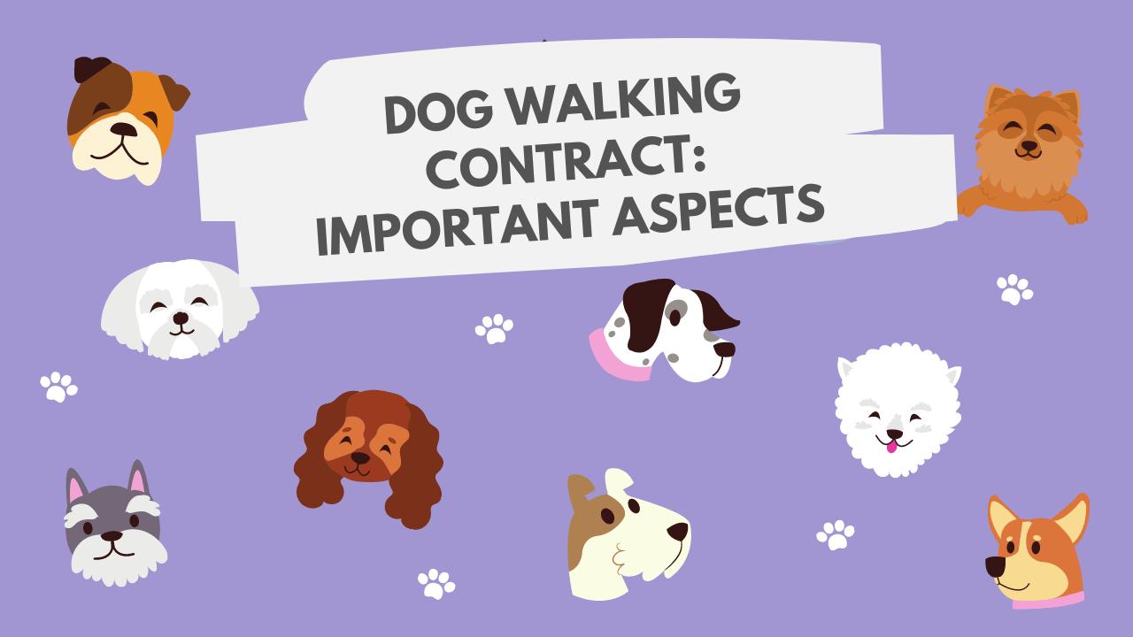 Dog walking important aspects